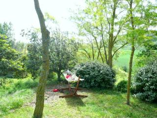 Maison des Miracles in the heart of Cathar Country - Aude vacation rentals
