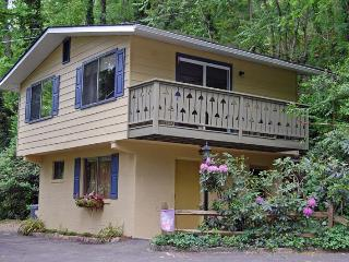 Pet-Friendly chalet 3 min. to downtown Asheville - Asheville vacation rentals