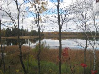 The Olive Branch Retreat on Fuller Lake - Grey Eagle vacation rentals