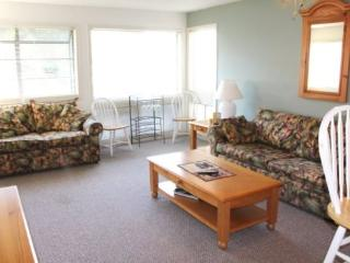 Great Vacation Condo with Lots of Upgrades - Myrtle Beach vacation rentals