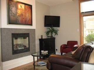 Stunning, two-bedroom, PENTHOUSE condo - DOWNTOWN - Victoria vacation rentals