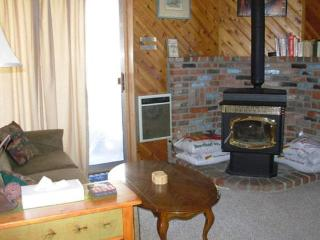 Cozy 2 bedroom Mammoth Vacation - Mammoth Lakes vacation rentals