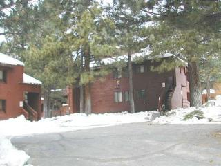 Wildrose - Large and bright two bedroom, two bath! - Mammoth Lakes vacation rentals