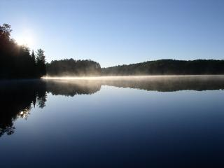 Wilderness Lakes; Old-Growth Forest; A Cozy Cabin - Watersmeet vacation rentals
