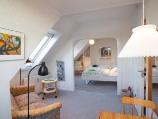 2 bedroom apartment + free bikes at your disposal. - Copenhagen vacation rentals