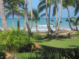 Glorious Ocean Front 4b/ 3ba - steps to the beach! - Las Terrenas vacation rentals
