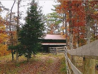 Big South Fork Cabin - Stearns vacation rentals