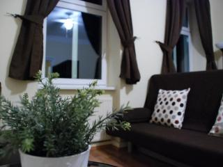 GREAT COUPLE DEAL - BARGAIN PRICES - APT 1 - Vienna vacation rentals