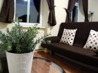 DISCOUNTED PRICES - Dont miss it !!! Apt 2 - Vienna vacation rentals