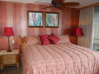 Beautiful 2 bdrm condo just steps from the ocean - Kihei vacation rentals