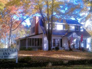 Chestnut Inn Bed and Breakfast - Conasauga vacation rentals