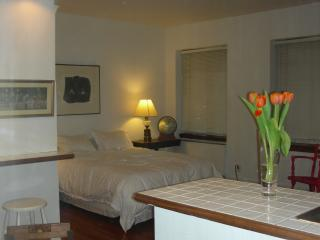 Midtown NYC rental - New York City vacation rentals