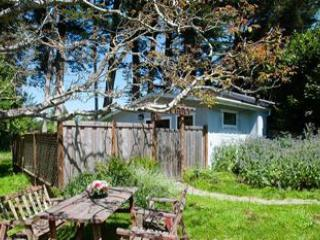 The Hideaway - Berry Patch Cottage and the Hideaway - Point Reyes Station - rentals