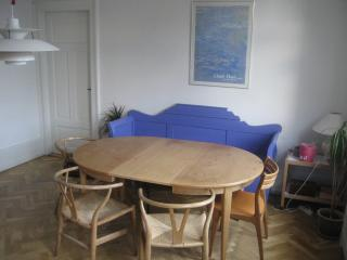 A Large 3 Bedroom Apt. In The Center Of Copenhagen - Copenhagen vacation rentals