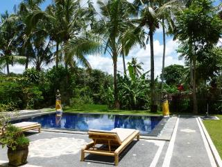 Villa Tatiapi: 2 bedroom Ubud villa, private pool - Ubud vacation rentals
