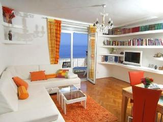 Apartment Sanja - Dubrovnik vacation rentals