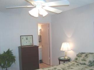 Siesta Key Fl. Condo- White Sands Village- BEACH!! - Image 1 - Siesta Key - rentals