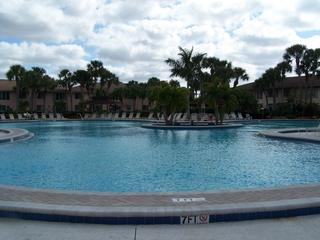 HUGE heated pool - Lovely relaxing newly remodeled condo w/HUGE pool - Naples - rentals