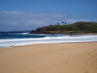 Ocean Front Beach Cottage - Maunaloa vacation rentals