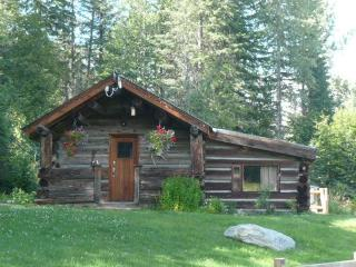 Historical 2 bedroom log cabin in Wells Gray Park - Clearwater vacation rentals