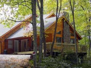 Eagle's Nest Cabin - Boone vacation rentals