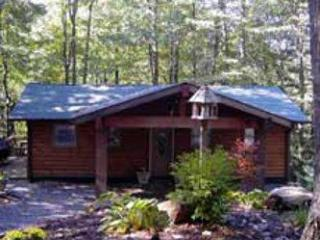 Escape Cabin - Boone vacation rentals