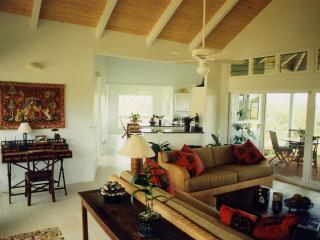 Kauai Vacation Hideaway-Privacy, Ocean View, Beach - Kilauea vacation rentals