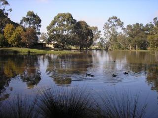 Romantic Yarra Valley B&B retreat, close to Nature - Yarra Glen vacation rentals