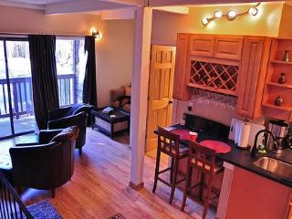 Quiet 2 BD Close to Heavenly WiFi XBox Pets OK - South Lake Tahoe vacation rentals