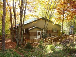 Gorgeous Chalet! Hot Tub/Sauna/1 Mile to SkiBeech! - Beech Mountain vacation rentals