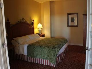 Beautiful 1 BR condos steps from French Quarter - New Orleans vacation rentals