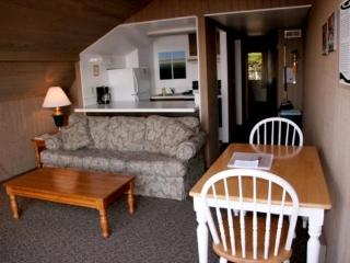 Beach Haven, The Balcony View Lodge Apartment - Eastsound vacation rentals