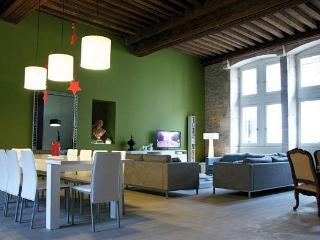 Luxury apartment in XVth century house in Burgundy - Beaune vacation rentals
