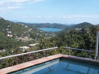 Affordable Pool Retreat For 2 With Ocean View - Saint John vacation rentals
