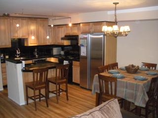 Spring Special! Save $$ Family Friendly (Sleeps 8) - Incline Village vacation rentals