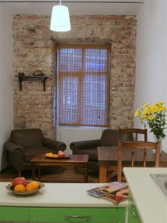 Living Istanbul - cozy 2 bedroom flat - Istanbul vacation rentals