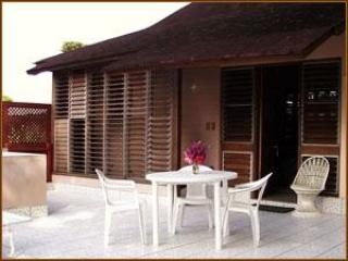 Sundeck I Studio, Nirvana on the beach - Image 1 - Negril - rentals