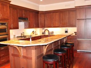 Luxury Downtown Condo * Private 8 Person Hot Tub - Steamboat Springs vacation rentals