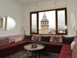 Living Istanbul - Over the rooftops in Galata - Istanbul vacation rentals