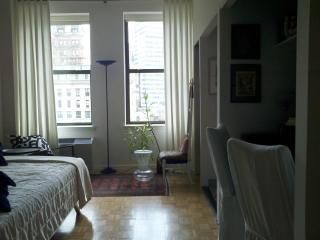 Sunny Luxurious Pied-a-terre by Battery Park - New York City vacation rentals