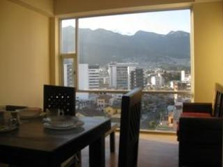 Beautiful view of the mountains and the city!!! - Quito Bello New !!! Apartment - Quito - rentals