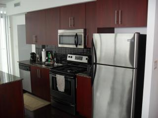 Downtown Luxury Condo with an Amazing View! - Toronto vacation rentals