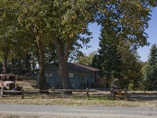 Palomar Mountain View Cabin from $119.00 NT - Palomar Mountain vacation rentals