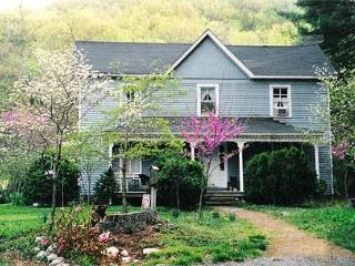 The Sugar Hollow Farmhouse - near Charlottesville - Charlottesville vacation rentals