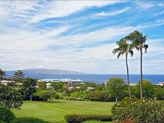Most Romantic Place on Maui. - Wailea vacation rentals