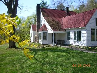 Our Shady Home - 4 Bedrooms 2 Baths  swimming pool - Woodstock vacation rentals