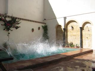 Studio with pool and patio. Central Jerez - Jerez De La Frontera vacation rentals