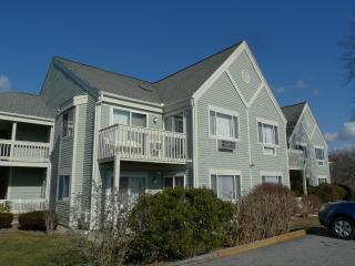 Ocean Edge Poolside 1 Bedroom, Sports Included NEW - Brewster vacation rentals