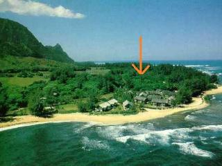 Short walk to Beach, Updated, A/C, From $1470/week - Haena vacation rentals