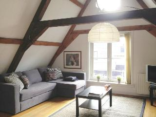 The Downtown Apartment - Amsterdam vacation rentals